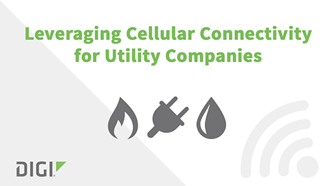 Leveraging Cellular Connectivity for Utility Companies